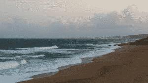 sunset dolphin coast