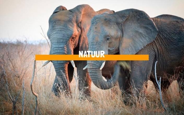 Ontdek-Type-Reis-Natuur